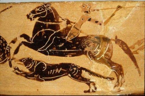 Βοιωτικό αγγείο που βρέθηκε στο Ωρωπό με παράσταση ιππέα που συνοδεύεται από το σκύλο του στο κυνήγι. Αποδίδεται στο «ζωγράφο της Αταλάντης» και χρονολογείται γύρω στο 550 π.Χ. Harvard University Art Museums:  Harvard_1960_390