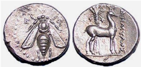 Ephesus bee